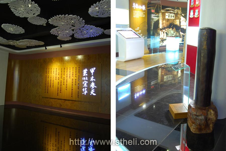 展厅总面积约为550平方,主要划分为前言,春华秋实,年轮如歌,大地图片